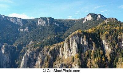вечнозеленый, гора, скалистый, trees, лиственница, лес