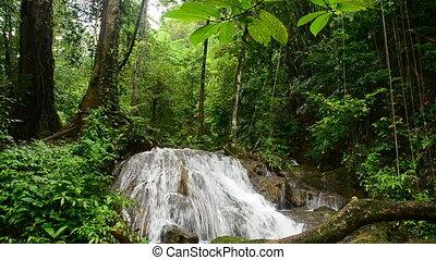 водопад, лес, глубоко