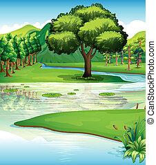воды, земельные участки, ресурсы