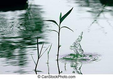воды, падение