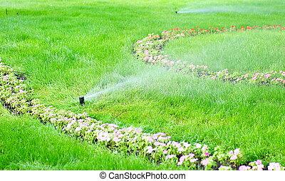 воды, трава, разбрызгиватель
