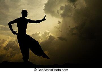 воинственный, arts, медитация, задний план