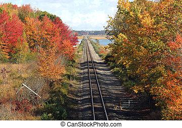 вокруг, tracks, поезд, падать, один, нет