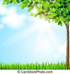 время года, дерево