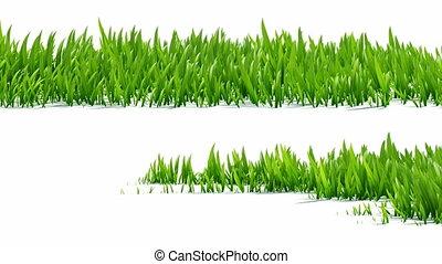 выращивание, альфа, трава, канал