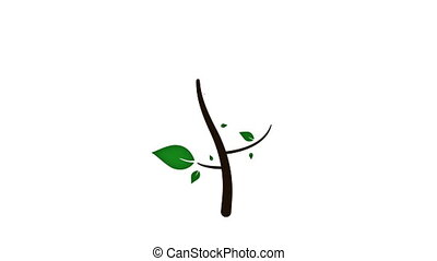 выращивание, дерево, анимация