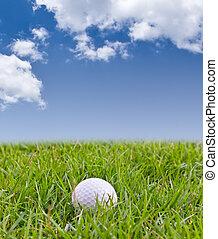 гольф, мяч, на, высокий, трава