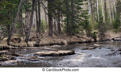 гора, идеалистический, весна, лес, река, пейзаж