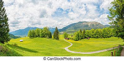 гора, панорама