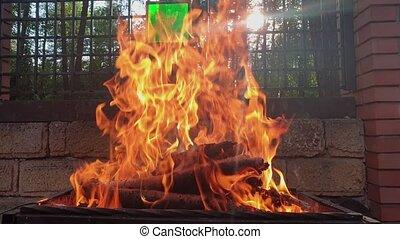 гриль, air., пламя, открытый, огонь
