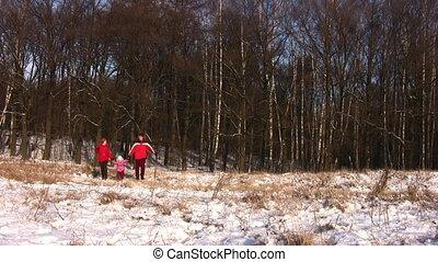 гулять пешком, зима, семья, парк, немного, девушка