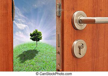 дверь, открытый