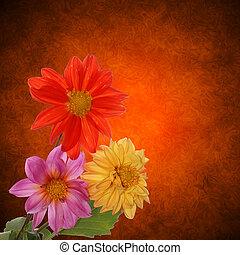 декоративный, цветок, дизайн