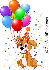 день рождения, щенок
