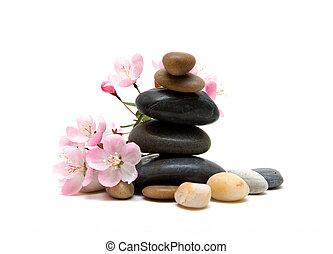 дзэн, /, спа, stones, with, цветы, isolated, на, белый, задний план