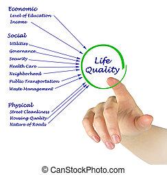 диаграмма, жизнь, качественный