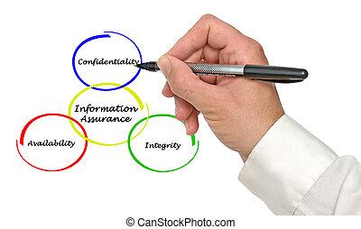 диаграмма, of, информация, гарантия