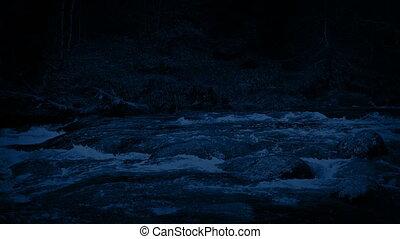 дикий, река, лес, ночь
