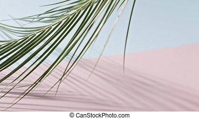 длинный, медленный, дерево, розовый, background., гладкий; ...