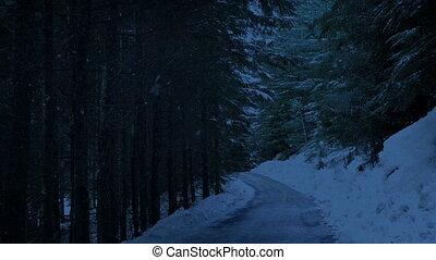 дорога, через, ночь, лес, снегопад