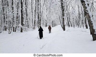 дорожка, гулять пешком, лес, женщины