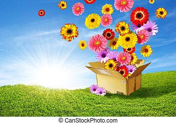 доставка, весна