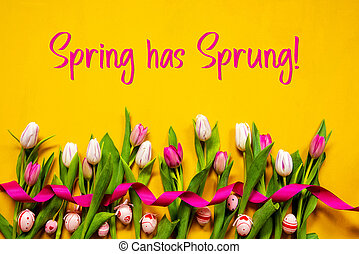 желтый, весна, яйцо, пасха, has, текст, красочный, тюльпан, захмелевший, задний план