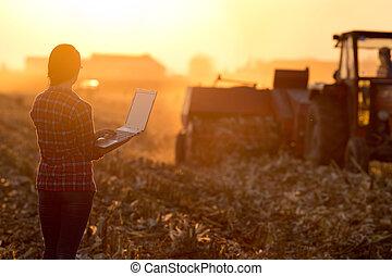 женщина, портативный компьютер, поле