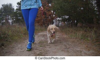 женщина, природа, бегун, собака, утро, бегать трусцой