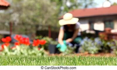 женщина, сад