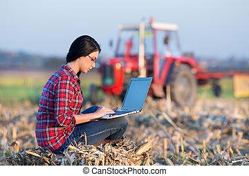 женщина, with, портативный компьютер, в, кукуруза, поле