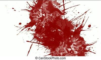 жидкость, &, покрасить, всплеск, чернила, красный