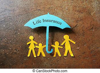 жизнь, страхование, бумага, семья