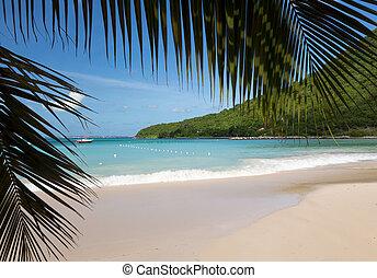 завивать волосы щипцами, улица, мартин, пляж, anse, славный