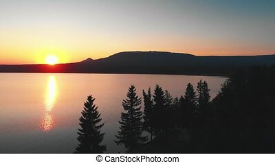 закат солнца, trees, природа, поздно, хвойный, -, оранжевый...