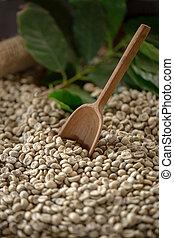 зеленый, кофе, фасоль, пробоотборник, марочный, origins, selections
