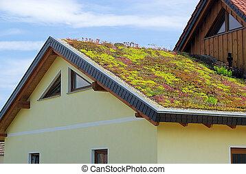 зеленый, крыша, 04