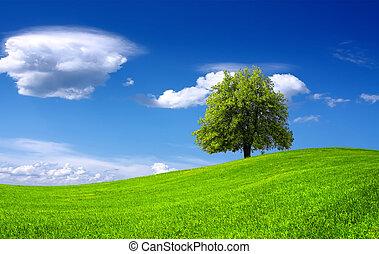 зеленый, пейзаж, природа