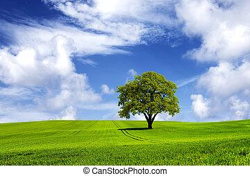 зеленый, энергия