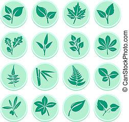 зеленый, leafs, icons