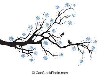 зима, дерево, филиал