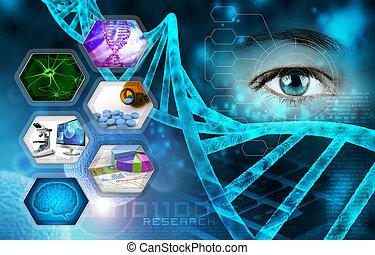 исследование, медицинская, наука, научный