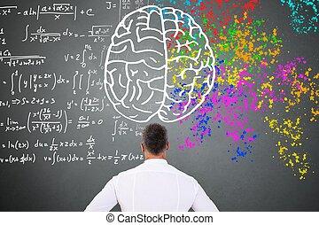 ищу, правильно, диаграмма, головной мозг, человек, оставил
