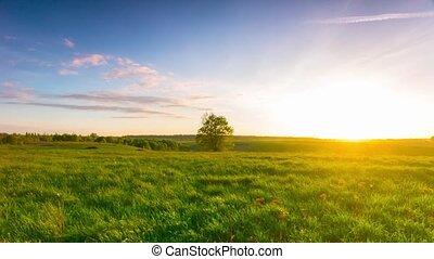 кастрюля, пейзаж, закат солнца, лето