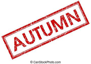 квадрат, печать, isolated, осень, задний план, шероховатый, белый, красный