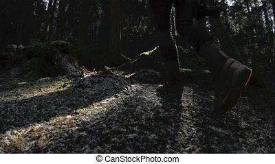 ключ, девушка, кадров в секунду, здоровый, motion., медленный, задний, камера, активный, walks, girl-photographer, ее, 60, низкий, руки, через, гулять пешком, посмотреть, forest., хипстер