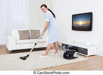 ковер, очиститель, вакуум, уборка, горничная