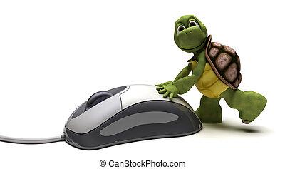 компьютер, мышь, черепаха