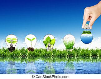 концепция, eco, -light, колба, трава, расти