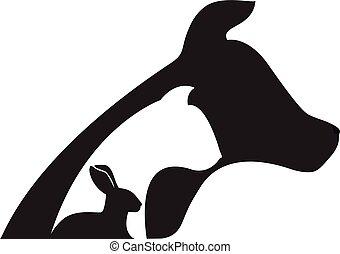 кот, кролик, логотип, ветеринарный, собака
